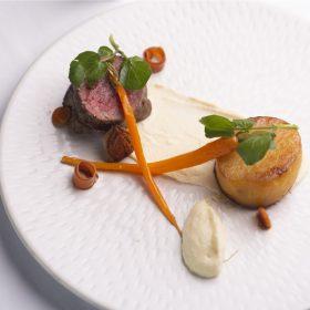 Katherine Powell dish